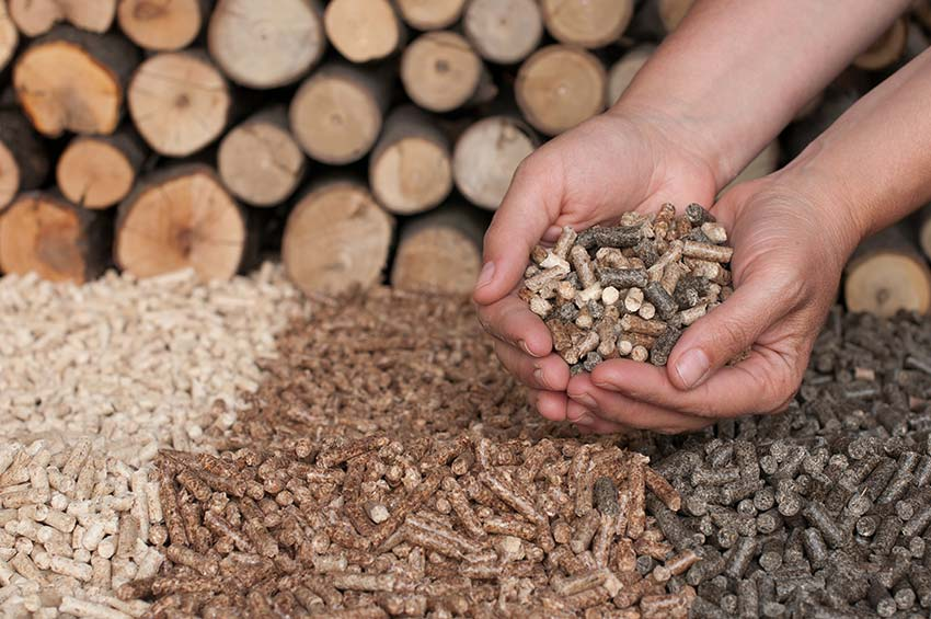 peleti de lemn